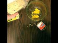 How To Make a Homemade Bird Feeder - Ace Hardware
