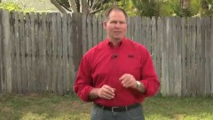 Three Steps to Control Lawn Weeds- Ace Hardware