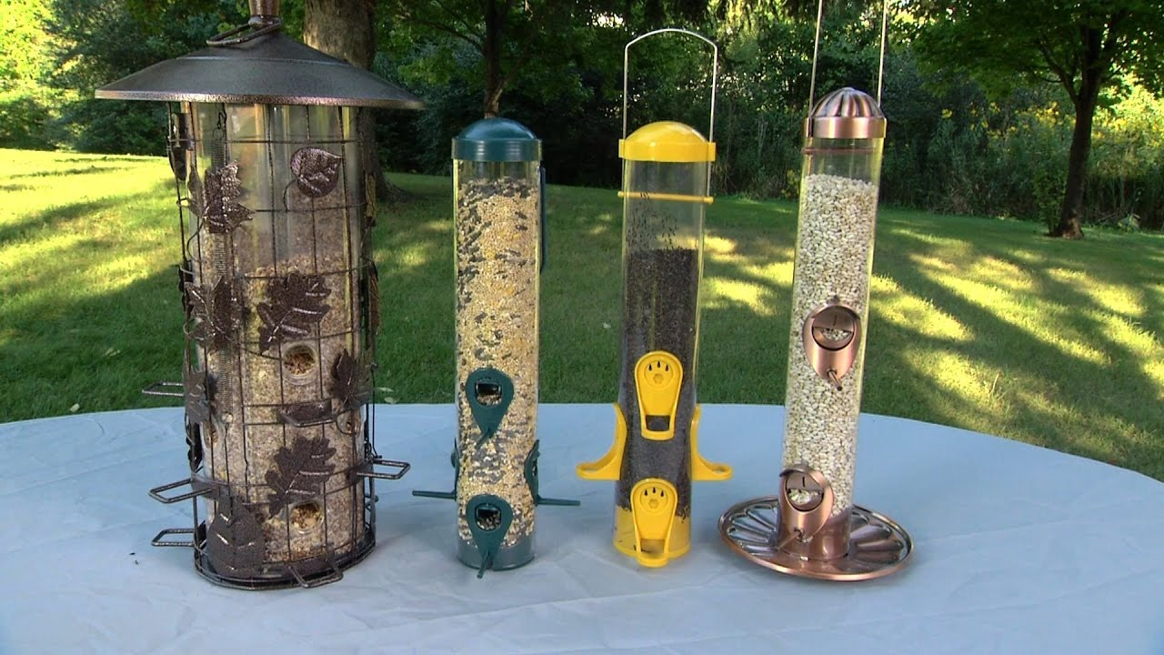 How To Set Up A Bird Feeder Ace Tips Amp Advice