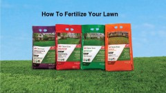 How-to-Fertilize-Your-Lawn-Ace-Hardware