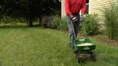 Lawn Overseeding -Thumbnail